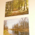 Radwanice i okolice na fotografii